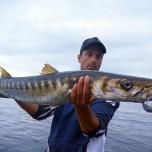 giuseppe-barracuda-tideminnowflyer175