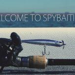 Spybaiting