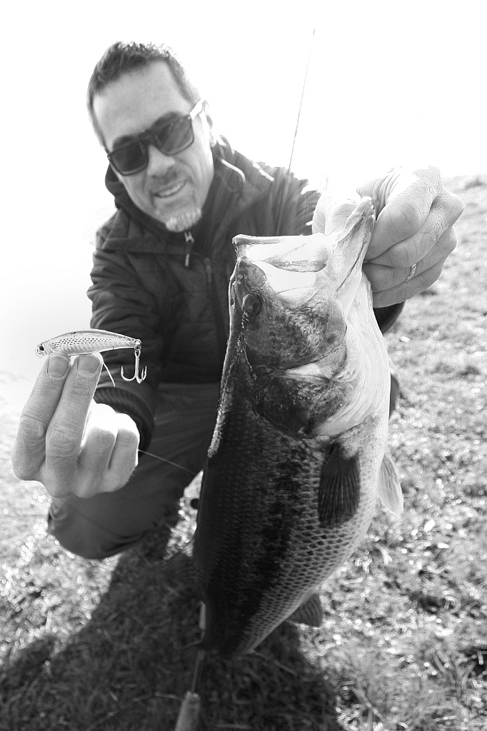 Even it is not suspended, with slowly sinking action Tide minnow sprint 75 is a good choice for lazy fat bass in a spring