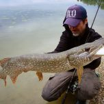 Big pike can not resist to big swimbait